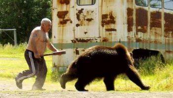 Медведь напал на японца, мужчина ударил зверя в нос и тот убежал