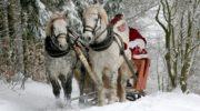 В ожидании новогодних праздников и Деда Мороза