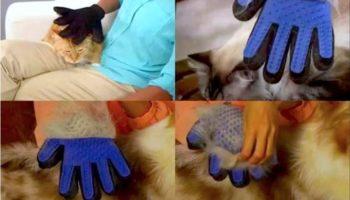Топ товаров для владельцев домашних животных